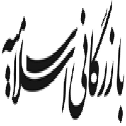نما شرکت بازرگانی اسلامیه
