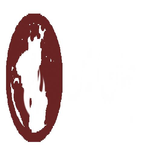 شرکت جهان ایمن