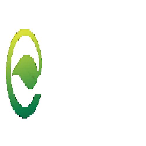 دکوراسیون شرکت چیدمان کنج سبز