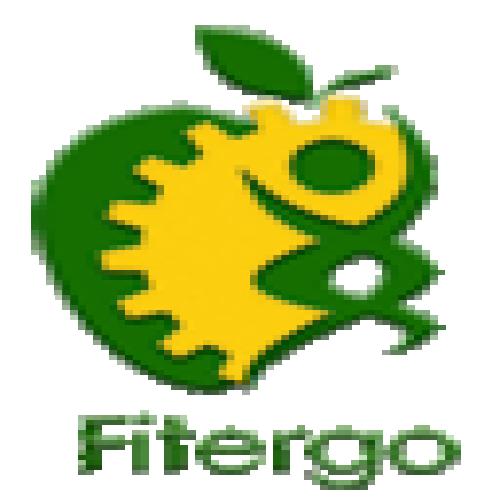 شرکت  فیت ارگو