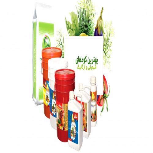 طراحی شرکت سبزینه تجارت