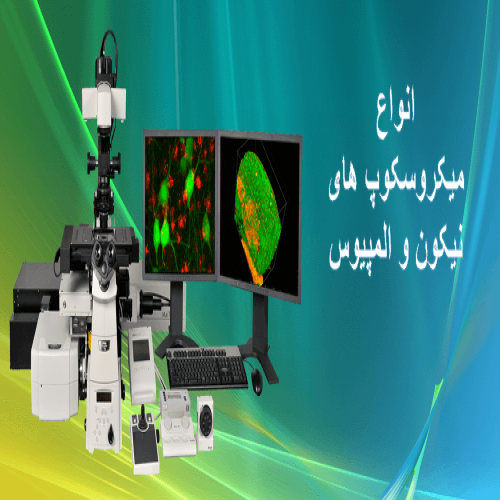 تصویر شرکت ویتا طب کوشا