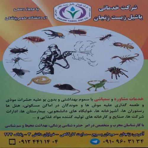 طراحی شرکت خدماتی یاشیل زیست زنجان