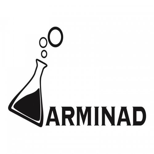 شرکت ارمیناد